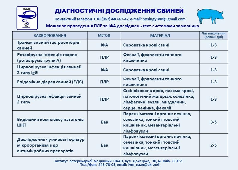 діагностичні дослідження Свині 3 слайд +1