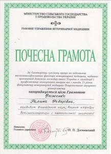 strucnew-06-20