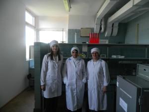 strucnew-09-05